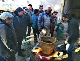 Carob syrup culinary tour paphos