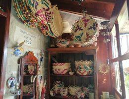 cultural tour larnaca