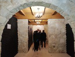 wine tasting tour paphos