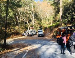 nature tour troodos cyprus